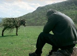 Donkey-with-Khudo